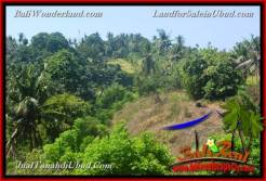 Exotic PROPERTY Ubud Gianyar 4,900 m2 LAND FOR SALE TJUB665