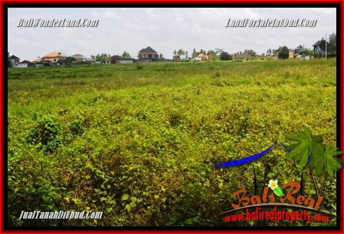 Affordable Property Land sale in Ubud TJUB685