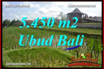 FOR sale Exotic 5,450 m2 Land in Ubud Bali TJUB688