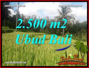 Affordable 2,500 m2 Land sale in Ubud Bali TJUB690