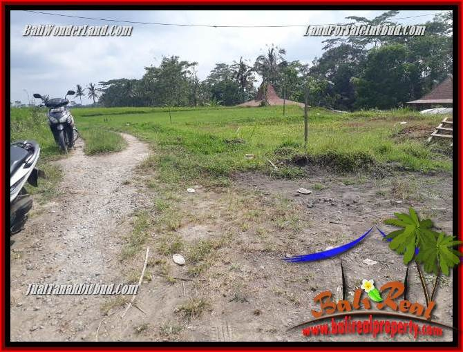 Beautiful Ubud Tegalalang 1,200 m2 Land for sale TJUB693