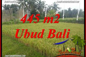 Magnificent Property 445 m2 Land for sale in Ubud Pejeng Bali TJUB695