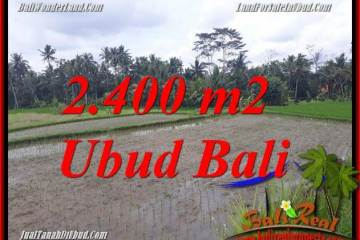 Magnificent Land sale in Ubud TJUB697