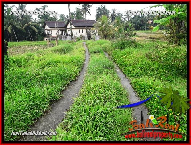 Magnificent Property Land in Ubud Bali for sale TJUB698