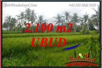 FOR sale Magnificent 2,100 m2 Land in Ubud Bali TJUB710