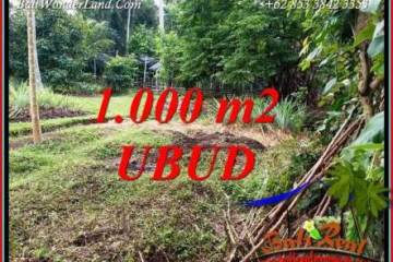 Affordable Land for sale in Ubud TJUB712