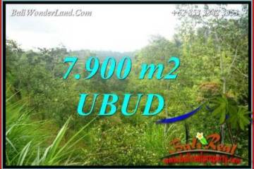 FOR sale Affordable Property 7,900 m2 Land in Ubud Tegalalang TJUB729