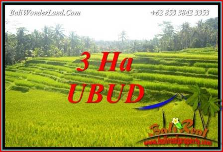 Magnificent Property 30,000 m2 Land in Ubud Tegalalang Bali for sale TJUB733