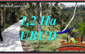 Beautiful Land sale in Ubud TJUB740
