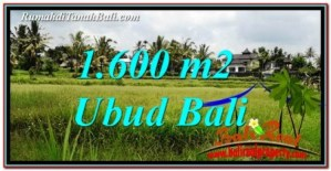 Magnificent PROPERTY LAND FOR SALE IN UBUD BALI TJUB756