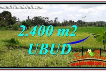 UBUD BALI 2,400 m2 LAND FOR SALE TJUB757