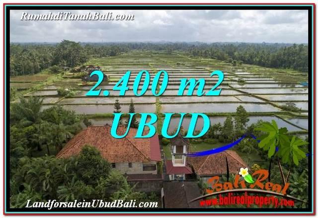 LAND IN UBUD FOR SALE TJUB761