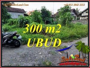 Magnificent LAND SALE in UBUD BALI TJUB809