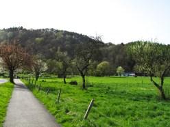 In den Wupperbergen von Solingen