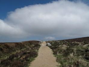 """laufe ich zwischen Heide und Steinen durch die Berge """"Kilmashogue"""" & """"Two Rock"""""""