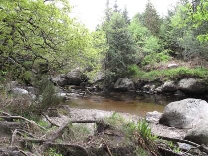 Am Ufer des Glenmacanass Rivers