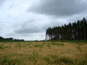 """Wanderung durch die Ardennen (""""Tal der Feen"""")"""