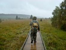 Wanderung durch das Hohe Venn (Naturzentrum Botrange)