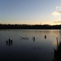 Auszeit am Höhenfelder See in Köln