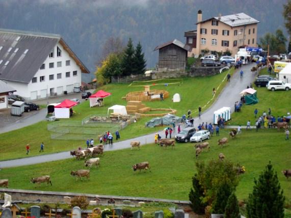 Festwiese in Seewis beim Prättigauer Alpspektakel