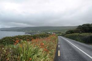 150923–Landlinien–BurrenWay-626