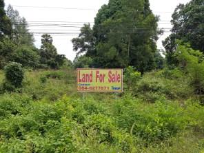 Einige Häuser und Grundstücke sind hier (noch) zu verkaufen