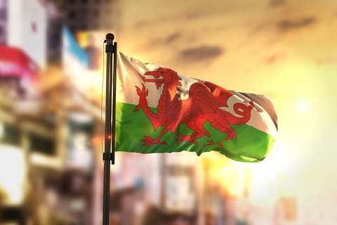 Landlords in Wales Tied Up in More Red Tape