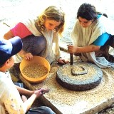 Grinding wheat by hand with millstones at Ein Yael Jerusalem