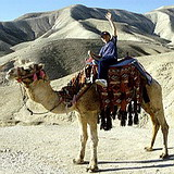 Camel ride in the Judean desert, Israel