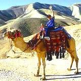 Beersheba & Negev tour