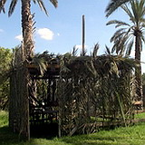 Tabernacles Sukkah booth