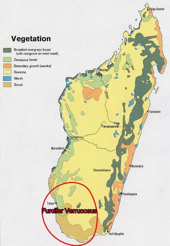 vero térkép