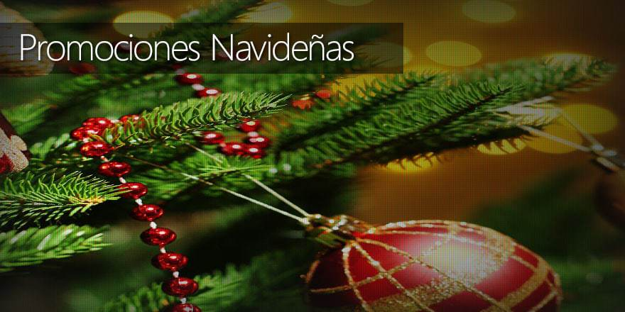 Grandes Promociones Navideñas por sólo $750 pesos