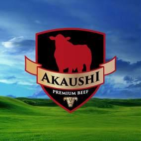 logotipo_akaushi