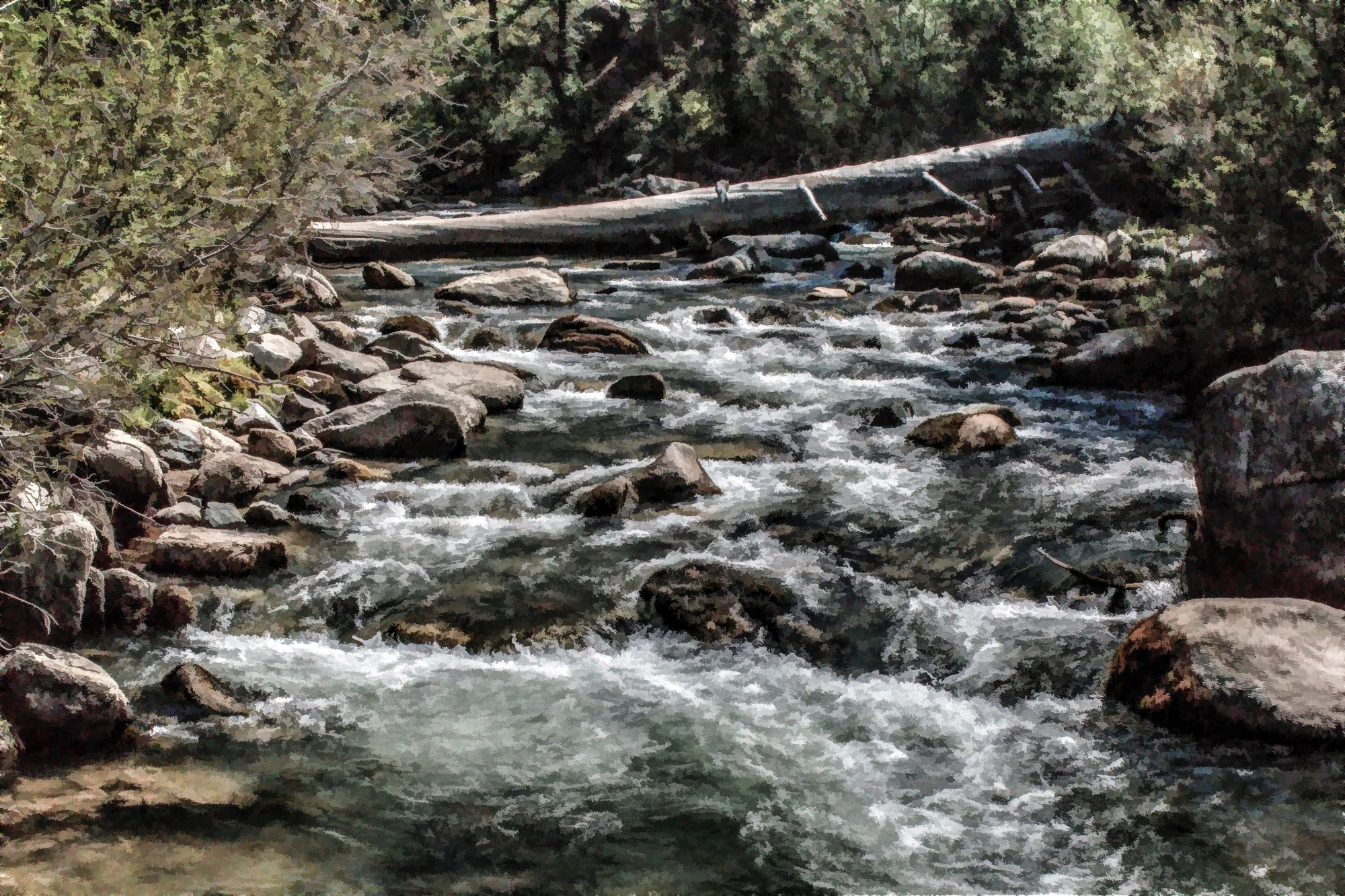 The Stanislaus River Off Highway 4