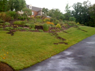 front yard runoff and storm water