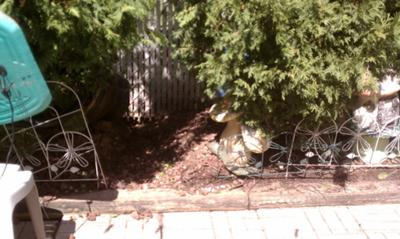 Help Neighbor changed grade to flood my backyard