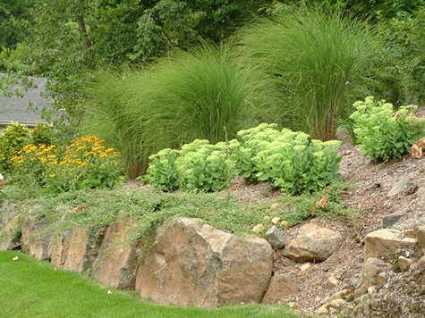 Landscaping Steep Slopes Hillside Landscapes