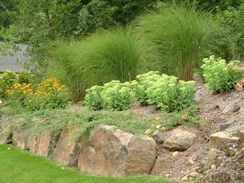 landscaping steep slopes hillside