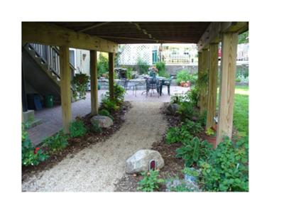Plants For Under A Deck
