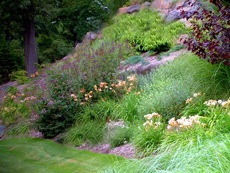 landscaping steep slopes hillside