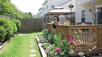 Backyard Drainage Problem