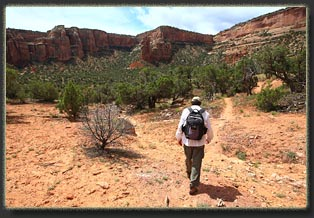 Hiking Gold Star Canyon to Liberty Cap Colorado