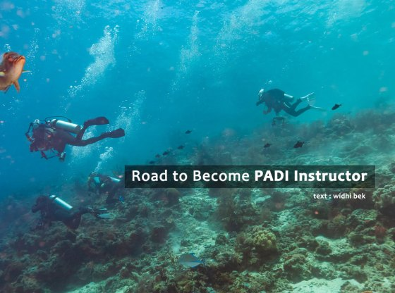idc 0 - Road to Become PADI Instructor