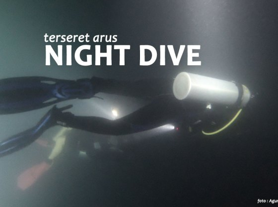 night dive 1 - Terseret Arus Night Dive