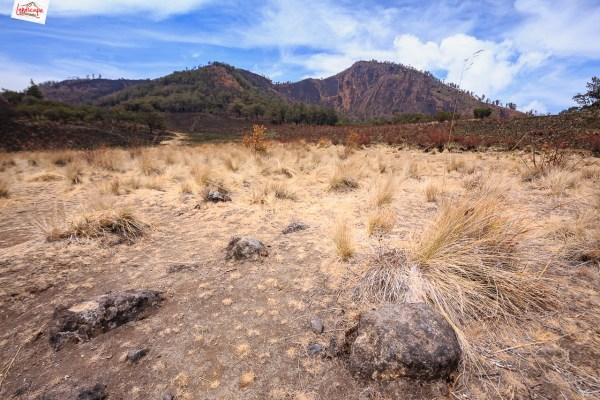 gunung-lawu-jalur-candi-cetho