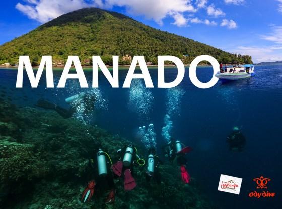 diving manado