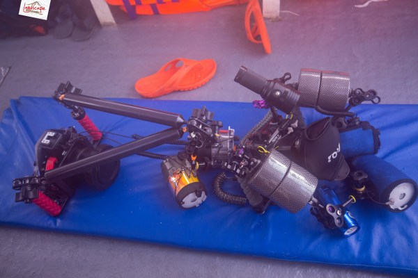 kamera underwater 1 1024x683 - Memilih Kamera Underwater | Underwater Photo Journey