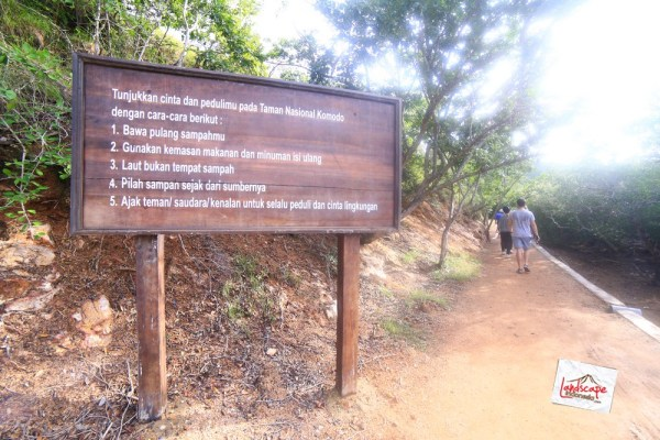 komodo d2 22 - Komodo Day 2 : Bertemu Komodo di Rinca