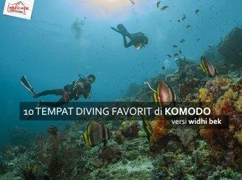 komodo favorit diving - 10 Diving Spot di Komodo pilihan WidhiBek